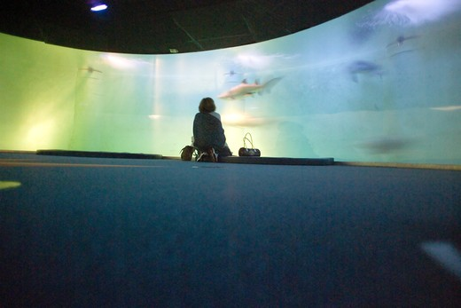 Stock Photo: 4285-8651 FRANCE BRITTANY SAINT-MALOGRAND AQUARIUM OCENARIUM L'ANNEAU DES REQUINS THE RING OF THE SHARKS 360ø CIRCULAR BASIN