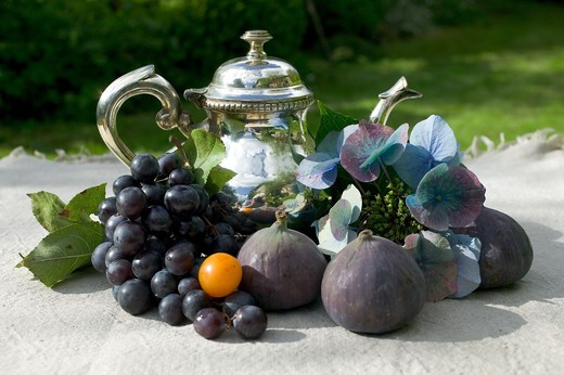 Stock Photo: 4285-8857 SEASONAL STILL LIFE WITH AN ASSORTMENT OF AUTUMNAL FRUITS AND SILVER TEAPOT AND A BLUE HYDRANGEA FLOWER IN GARDEN