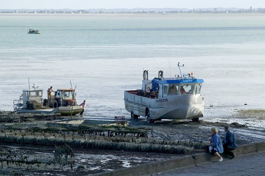 MUSSEL FISHING AMPHIBIAN TRUCK CANCALE HARBOUR BRITTANY FRANCE : Stock Photo