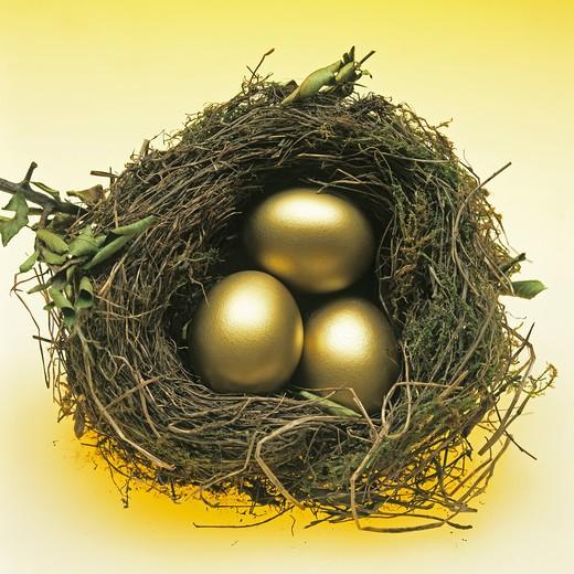 Stock Photo: 4285-9049 3 GOLDEN EGGS IN A BIRD'S NEST