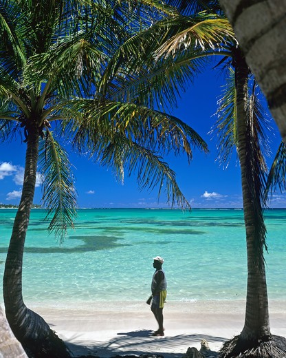 Stock Photo: 4285-9933 MAN STROLLING ON TROPICAL BEACH WITH PALM TREES AND LAGOON GUADELOUPE FRENCH WEST INDIES
