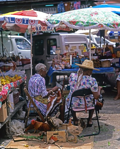 2 WOMEN SELLING POULTRY POINT-A-P?TRE MARKET GUADELOUPE FRENCH WEST INDIES : Stock Photo