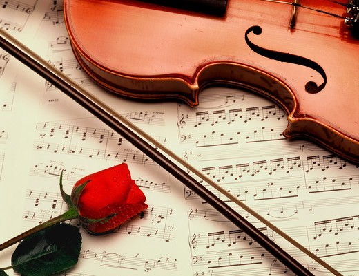 Stock Photo: 4286-17674 Music rose violin