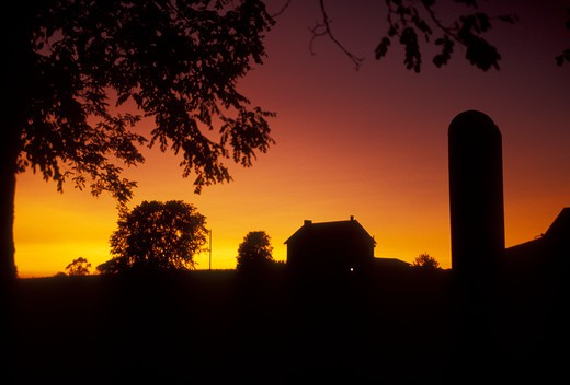 Lancaster County, Amish country, silhouette, farm, Pennsylvania, Pennsylvania Dutch Country, A silhouette of an Amish farm at sunset in Lancaster in the state of Pennsylvania.  : Stock Photo