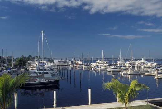 Stock Photo: 4286-20166 Fort Myers, FL, Gulf of Mexico, Florida, Boats docked at a marina at City Yacht Basin in Fort Myers.