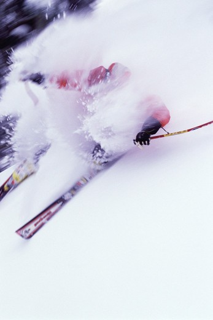 A man skiing powder snow at Sugar Bowl in California. : Stock Photo