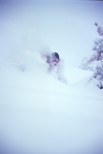 Stock Photo: 4286-21638 A man skiing powder at Alpine Meadows, CA.