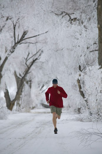 Stock Photo: 4286-21680 A man running past frosty trees in Lovelock, NV.