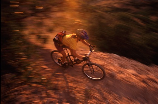 Stock Photo: 4286-21834 A woman mountain biking down a dusty single track trail near Truckee, CA