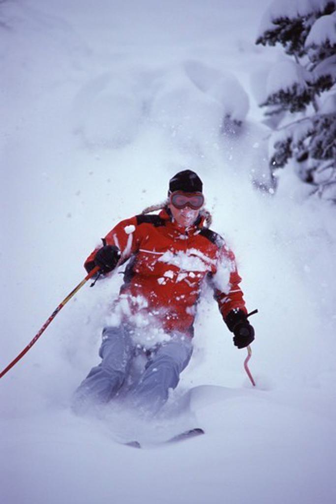 A woman skiing powder at Alpine Meadows, CA. : Stock Photo