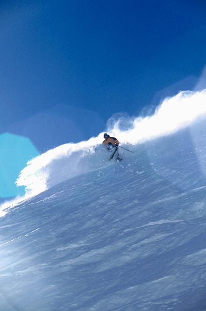 A man skiing powder at Sugar Bowl, CA. : Stock Photo