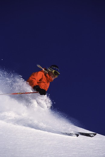 A woman skiing powder at Alpine Meadows, CA. : Stock Photo