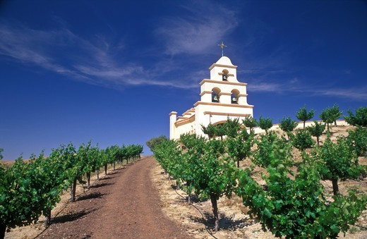 Stock Photo: 4286-23186 USA, California, Paso Robles, Spanish Mission style church on hill with grape vineyard