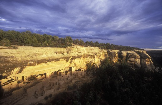 USA, Colorado, Mesa Verde National Park, Cliff Palace, cliff dwellings of the Anasazi A.D. 1200 : Stock Photo