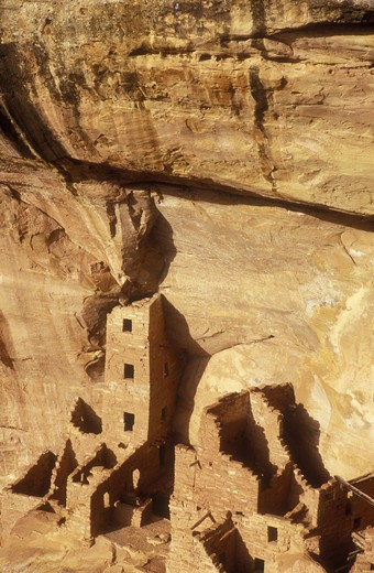 Stock Photo: 4286-24090 USA, Colorado, Mesa Verde National Park, Square Tower House, cliff dwellings of the Anasazi A.D. 1200