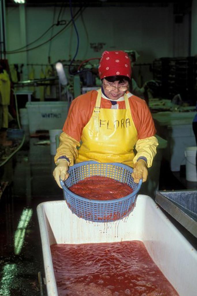 Stock Photo: 4286-24310 USA, Alaska, Anchorage, salmon processing plant