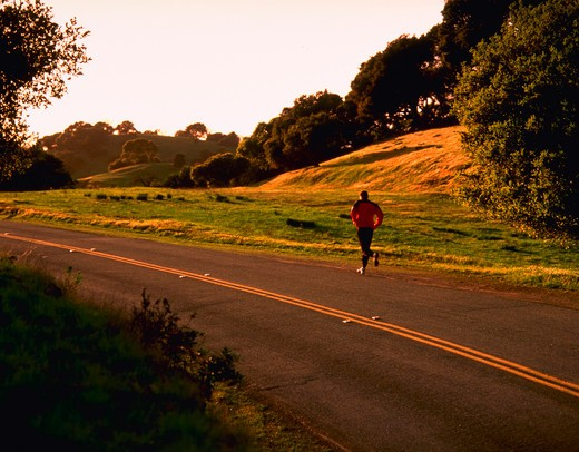 Stock Photo: 4286-24516 Man running along tree-lined road in morning light.