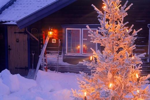 Stock Photo: 4286-25957 Mountain cabin under snow in Dalarna Sweden with Christmas lights on tree