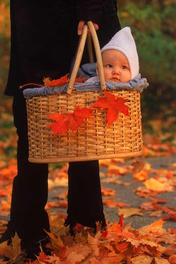Stock Photo: 4286-25961 Mother taking baby in basket for autumn walk