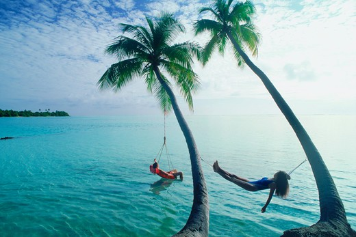 Stock Photo: 4286-26587 Couple hanging from seperate palm trees in Maldive Islands