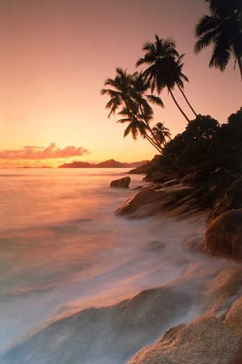 Palm trees and waves over granite rock formations on La Digue Island at sunset : Stock Photo