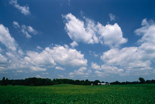 Clouds on the eastern shore of Maryland. : Stock Photo