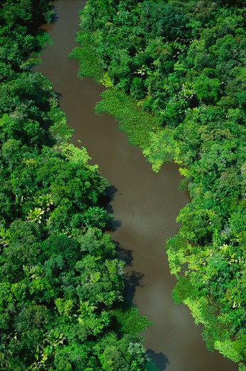 Stock Photo: 4286-35320 Aerial of river in floodplain forest in Marajo Island, Amazon estuary, Brazil.