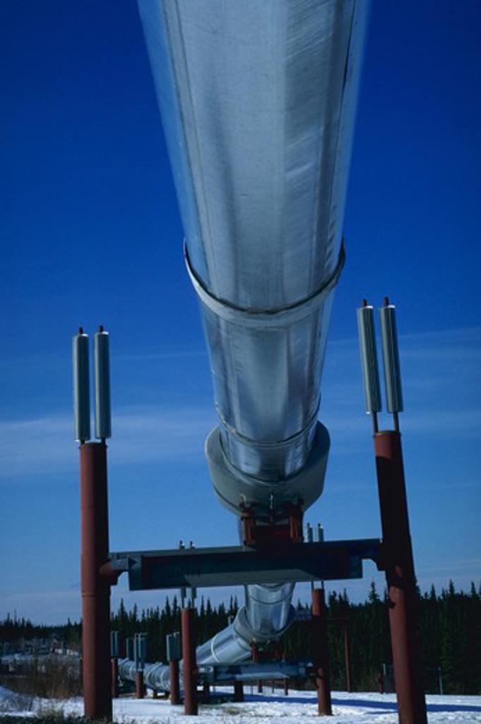 Stock Photo: 4286-36029 Alaska oil pipeline.