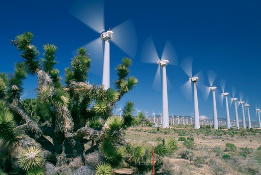 Stock Photo: 4286-36187 A multitude of wind turbines taken in Mojave, California.