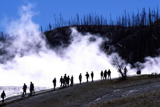 Stock Photo: 4286-36258 Tourists are silhouetted against the steam from a geothermal area in Yellowstone National Park, Wyoming. Devastation from a forest fire can be seen in the background.