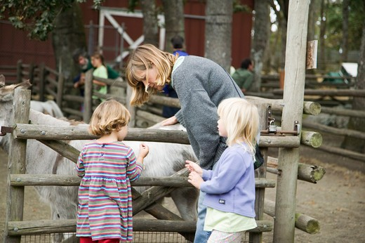 Stock Photo: 4286-41073 Family at the Childrens Zoo Victoria British Columbia Canada