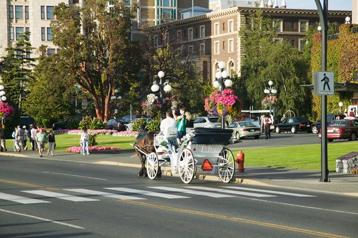 Stock Photo: 4286-41090 Horse and Buggy Ride Victoria British Columbia Canada