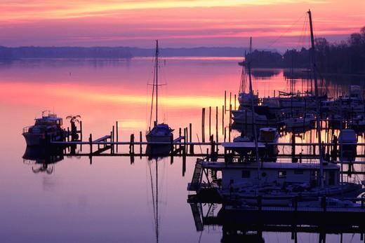 Stock Photo: 4286-41612 Sailboats in small marina at sunrise on still water on South River, Edgewater, Maryland.
