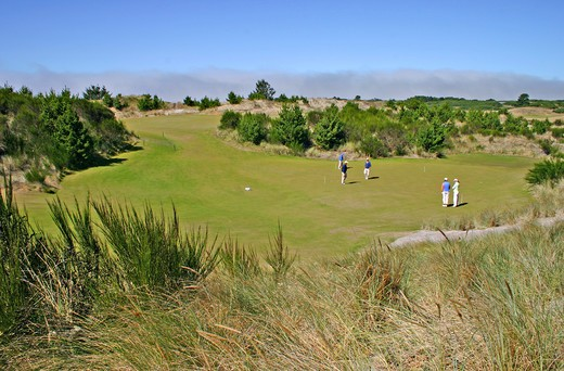 Stock Photo: 4286-42449 Golfers at Bandon Trails Golf Course in Bandon Dunes Golf Resort Bandon Oregon
