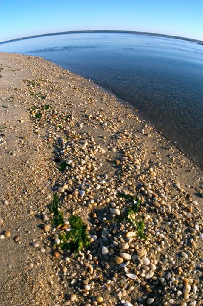 Stock Photo: 4286-43172 Beach on the Peconic Bay, Southold, NY.