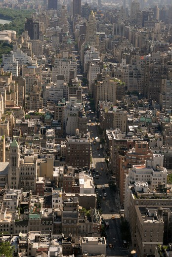 Stock Photo: 4286-43175 View looking down on Madison Avenue, NYC.