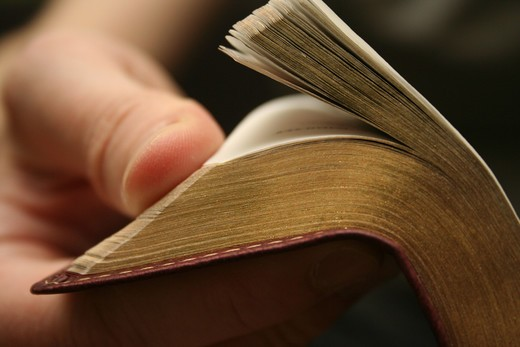 Young blond man reading the Bible - closeup on hand with gold leaf pages : Stock Photo