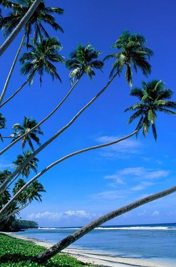 Stock Photo: 4286-44852 Faiaai Beach, Island of Savaii, Samoa