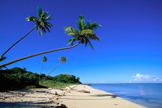 Malololailai, Mamanuca Group, Fiji : Stock Photo