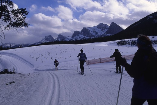 Stock Photo: 4286-45998 Cross country skiing, Canmore Nordic Center, Alberta, Canada