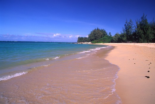 Stock Photo: 4286-46397 Kanaha Beach, Maui, Hawaii, USA