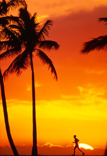 Stock Photo: 4286-46508 Runner at sunset