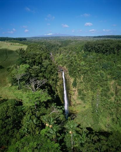Stock Photo: 4286-47725 Akaka Falls, Hamakua Coast, Island of Hawaii, Hawaii, USA