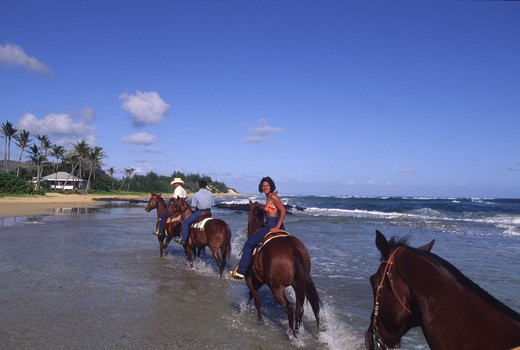 Stock Photo: 4286-48058 Horsebackriding, CJM Stables, Poipu, Kauai, Hawaii