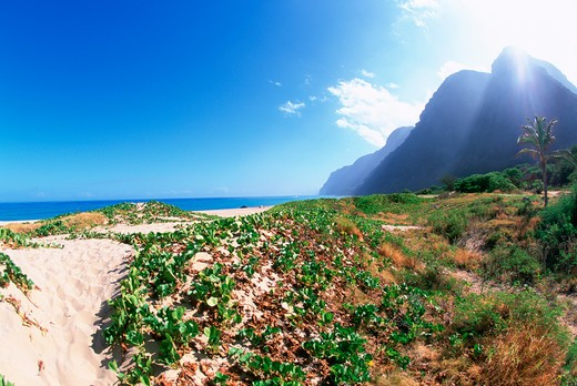 Polihale Beach Park, Kauai, Hawaii : Stock Photo
