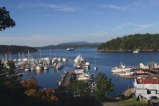 Stock Photo: 4286-51405 Friday Harbor, San Juan Islands, Washington