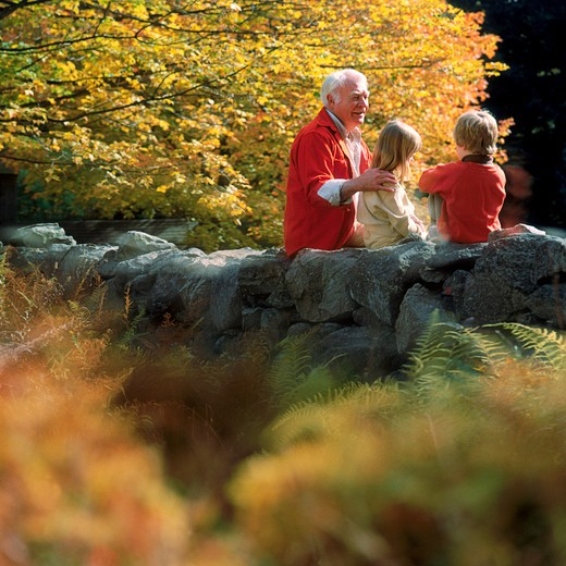 A grandfather sitting amongst the fall foliage on a rock wall with his grandson and granddaughter. : Stock Photo