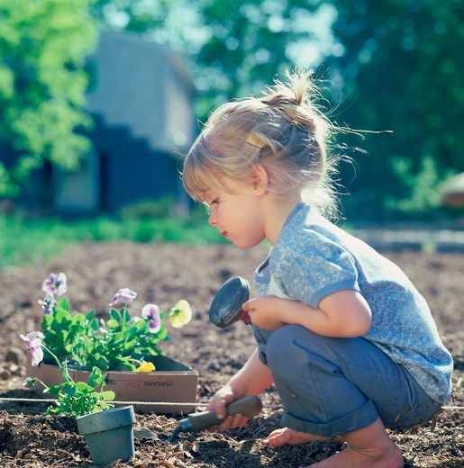 Stock Photo: 4286-53013 Little girl uses a trowel to dig in a garden to prepare for the planting of a box of pansies.