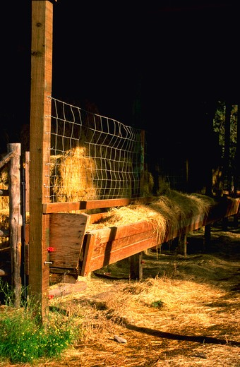Stock Photo: 4286-54482 Scene of feed trough in rancher's barn