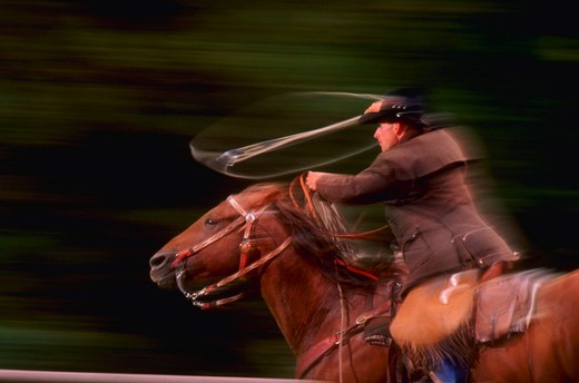 Rider with lasso, blurred : Stock Photo